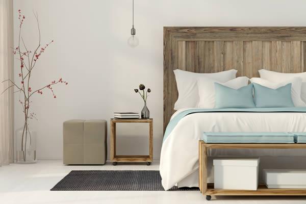 Bed bug exterminators Lindsay Ontario