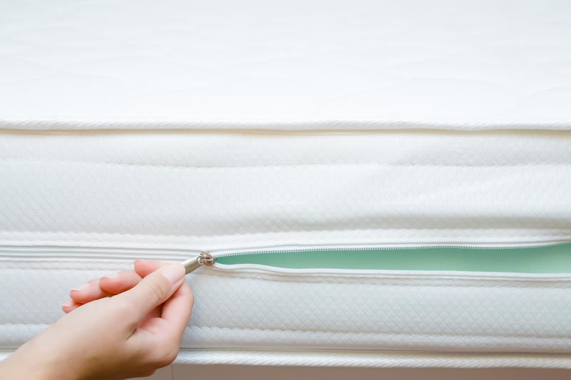 bed bug mattress encaements